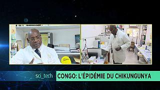 Contenir l'épidémie du chikungunya au Congo [Sci-Tech]