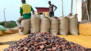 Ghana - Ivory Coast lift ban on cocoa sales