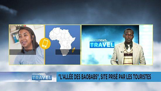 """Madagascar : """"l'Allée des Baobabs"""", un site prisé par les touristes"""