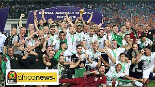 [LIVE] AFCON 2019 final: Algeria shocks Senegal with early opener