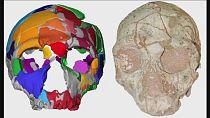 Grèce: un crâne d'Homo sapiens qui daterait de 210.000 ans découvert