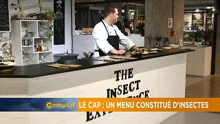 En Afrique du Sud, un restaurant propose un menu constitué d'insectes [The Morning Call]