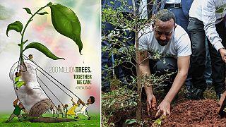 Over 353 million seedlings in 12-hours: Ethiopia 'breaks' tree-planting world record