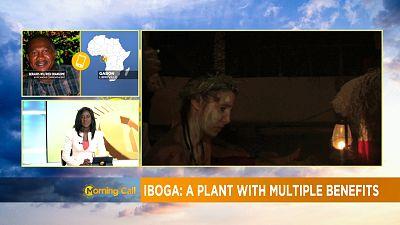 Gabon prepares for first international forum on Iboga [Morning Call]