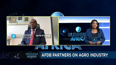 AfDB partners on agro industry [Business Africa]