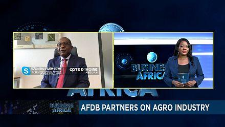 Agro-Industrie : partenariat BAD-Chine