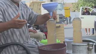 Tunisia's delicate ''legmi'' palm wine drink