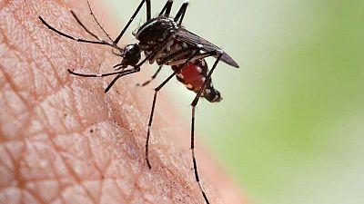 Uganda records 1.4 million malaria cases since June