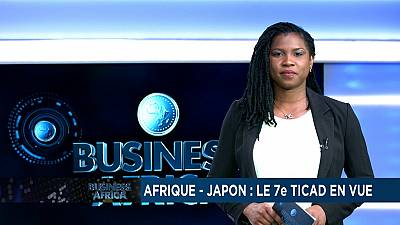 Africa-Japan: the 7th TICAD in sight