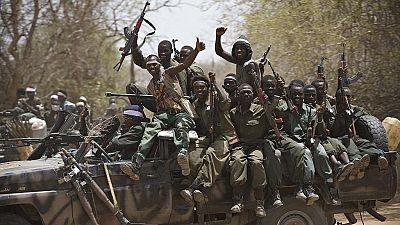 Le Tchad condamne plus de 240 rebelles après l'incursion stoppée par la France en février