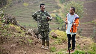 Celebrating Rwanda's first mountain gorillas' vet who just happens to be a woman