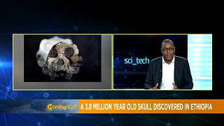 3.8 million years old skull discovered in Ethiopia