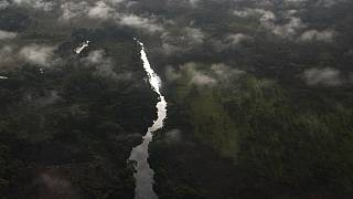 Congo gets $65m funding to protect earth's lung, Congo Basin