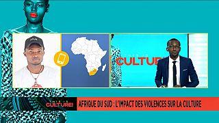 Afrique du sud : l'Impact des violences xénophobes dans le milieu culturel