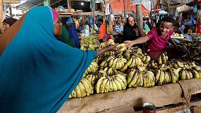 Somalie : légère hausse de croissance économique en vue