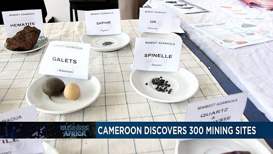 Cameroon discovers 300 mining sites [Business Africa]