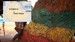 Brutal 'ethnic' attacks on outskirts of Ethiopia capital Addis Ababa