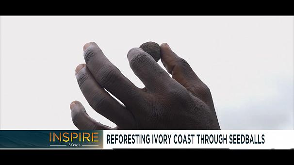 Reforesting Ivory Coast through Seedballs [Inspire Africa]