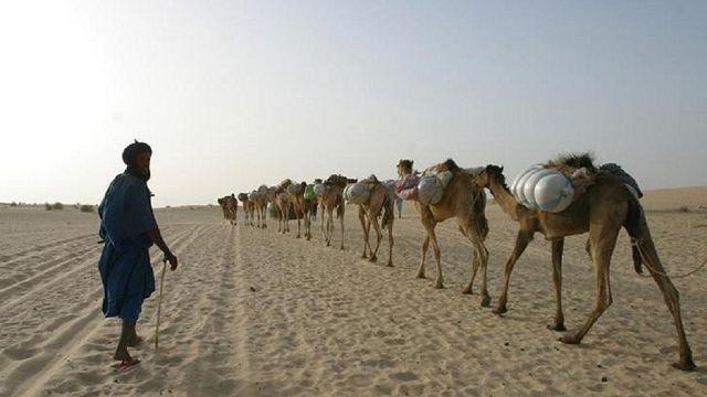 Mali : deux fillettes tuées dans des violences à Tombouctou