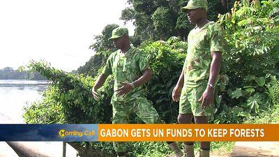 Le Gabon primé pour la protection de sa forêt [Morning Call]