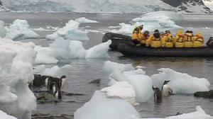 Tourism in Antartica to be curtailed