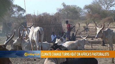 Afrique : le changement climatique affecte les éleveurs [Morning Call]