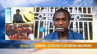 Cameroon's ongoing national dialogue to end by Friday [Morning Call]