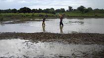 At least 28 killed in heavy rains in northeastern Ghana