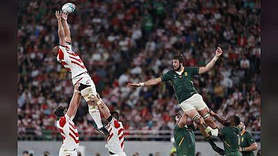 Mondial de rugby : les Springboks en demis