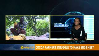Cocoa farmers in West Africa struggle to make ends meet