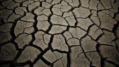 Afrique du Sud : les autorités imposent des restrictions d'eau dans les grandes villes