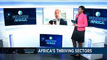 Africa's growth-generating sectors[Business Africa]