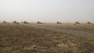Trois Tchadiens enlevés par Boko Haram au Tchad