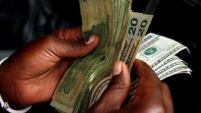 Le Zimbabwe persiste dans ses réformes malgré les difficultés économiques à court terme