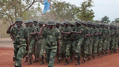 RDC : un nouveau chef des rebelles hutus rwandais tué (source militaire)