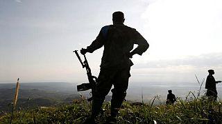 RDC : faire cesser les massacres des ADF à Beni, un défi pour l'armée et Tshisekedi