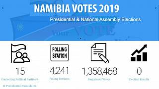 Namibia's presidential, national assembly polls: All you need to know