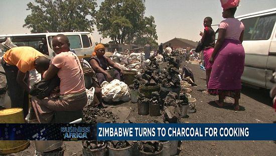 Zimbabwe : ruée vers le charbon de bois [Business Africa]