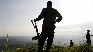 Rwanda welcomes killing of Hutu militia commander in DRC