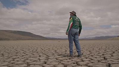 Afrique du Sud : alerte à la sécheresse !