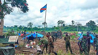 RDC: 80 éléments présumés des ADF éliminés (armée)
