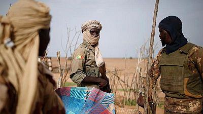 Deux soldats maliens tués et sept autres blessés par l'explosion d'une mine artisanale (armée)