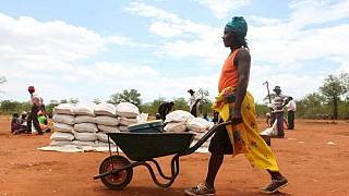 U.N. plans food assistance for 4.1m 'stranded' Zimbabweans