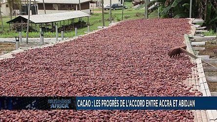 Cacao : les progrès de l'accord entre Accra et Abidjan [Business Africa]