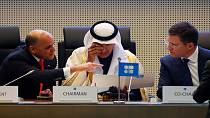 OPEC countries, Russia to cut oil output