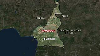 Cameroon's Far North recorded 275 deaths by Boko Haram: Amnesty