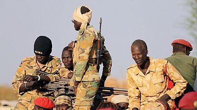 Soudan du Sud : 40 millions de dollars dégagés pour l'intégration des rebelles à l'armée
