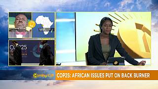 COP25 : l'Afrique la grande perdante ? [Morning Call]