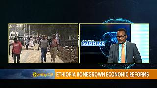Ethiopia Homegrown Economic Reforms