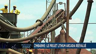Zimbabwe: Arcadia Lithium Project re-evaluated[Business Africa]
